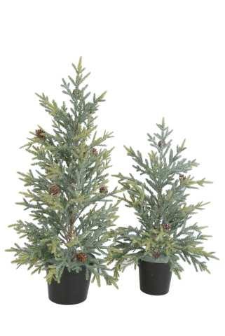 Tannenbaum beschneit