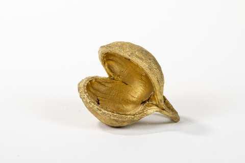 Buddha Nuts