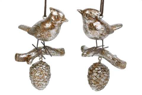 Vogel auf Ast mit Zapfen, Poly, 2 Mod.