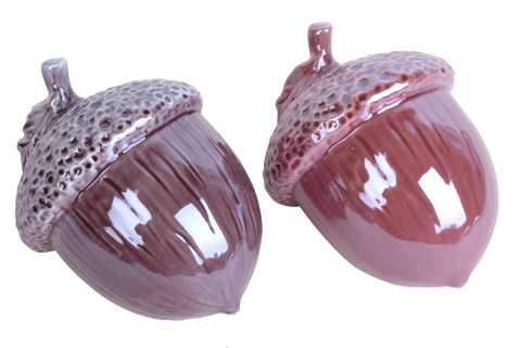 Keramikeichel zum Legen