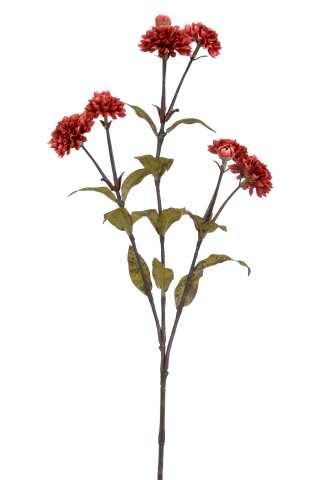 Chrysantheme x 9