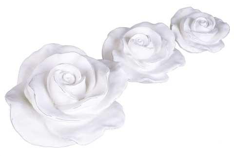 Rose Poly liegend